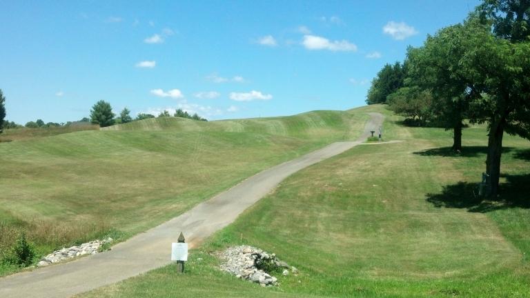 Meadows 2-1