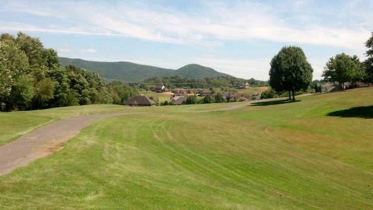 Meadows 8-1